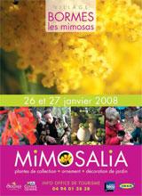 12ème édition de Mimosalia à Bormes les Mimosas